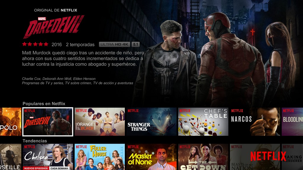 Netflix app iPad